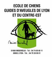 Course des Héros Lyon 2013 Ecole de Chiens Guides d