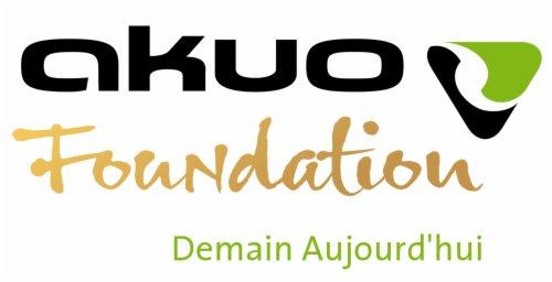 """Résultat de recherche d'images pour """"fondation akuo"""""""